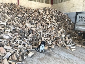 The Clun Log Company Open Day 2018 – Wednesday 12th September 10am until 2pm